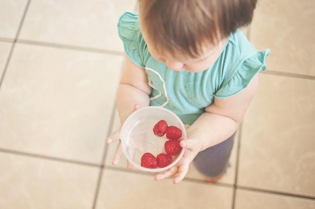 ребенок, питание, ягоды, вегетарианство